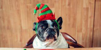 3 Weihnachtsspeisen, die gar nicht so ungesund sind