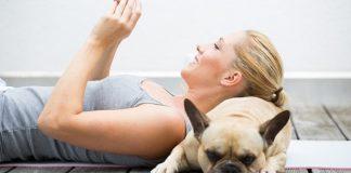Tiere helfen beim Stressabbau